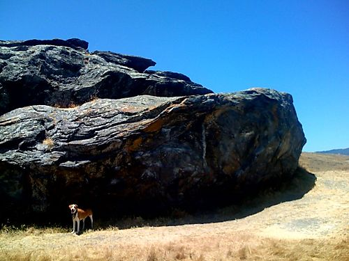 Pista and the Boulder